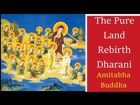 Read more about the article 💥 The Pure Land Rebirth Dharani | Amitabha Buddha Long Mantra 12 Times | Transfer Merits 💥